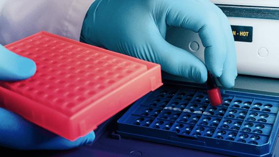 pigmenti-laboratorio